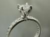 Platinum diamond solitaire